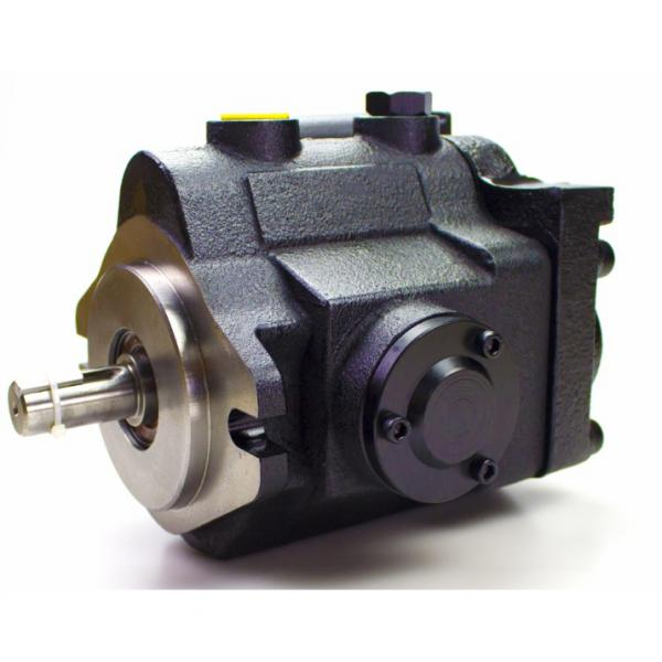 hydraulic gear pump parts 312-8215-100 housing for parker,commercial brand P30/31 Hydraulic Gear Pump motor #1 image
