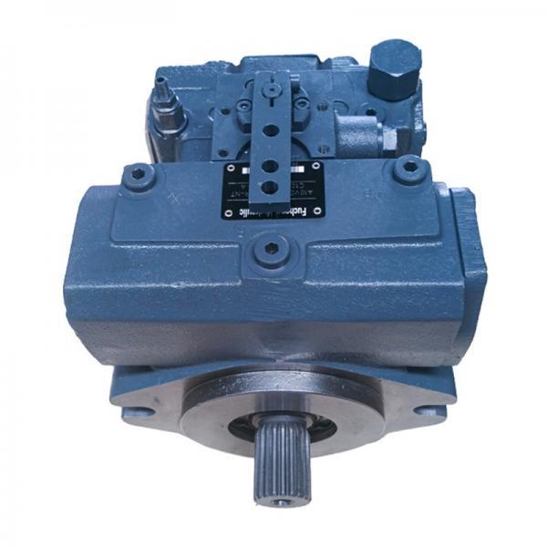 Rexroth hydraulic pump A10VD17 A10VD28 A10VD43 A10VD71valve plate #1 image
