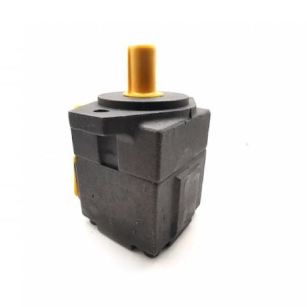 C101 Dump Pump #1 image